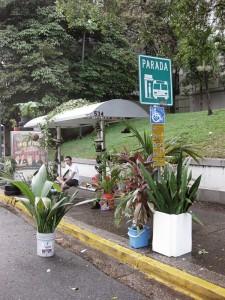 Parada de Guagua. Radames Juni Figueroa